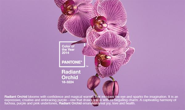 Pantone 2014: Radiant Orchid